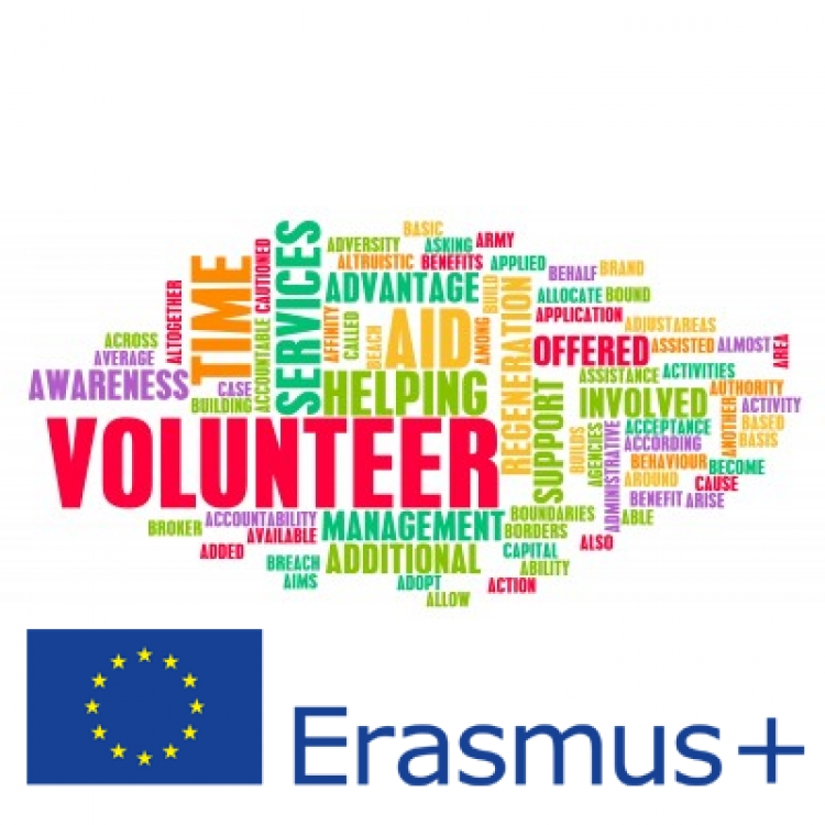 European Voluntary Service (EVS)
